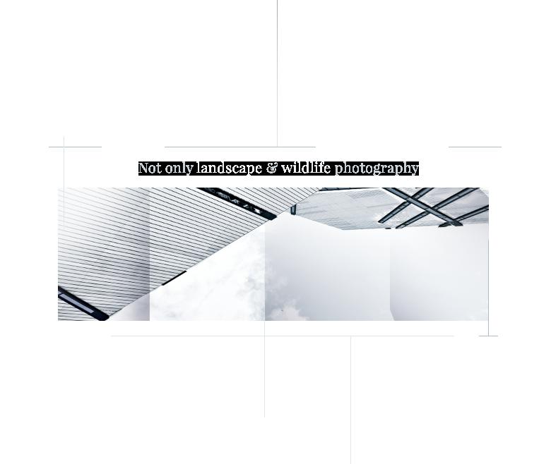 home_snapshot_intro_pic